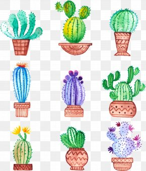 Hand-painted Potted Cactus - Cactaceae Watercolor Painting Drawing PNG