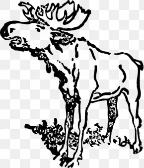 Moose Cliparts Black - Moose Drawing Black And White Clip Art PNG