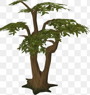 Jungle Tree Transparent Picture - Trunk Tree Stump Old School RuneScape Jungle PNG
