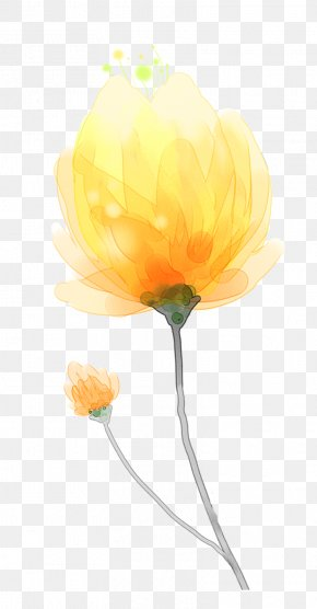 Yellow Hand-painted Watercolor Flower Decoration Pattern - Watercolor Painting Yellow Computer Software PNG