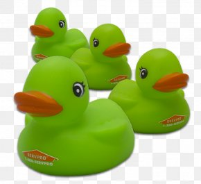 Duck - Rubber Duck Natural Rubber Baths Toy PNG