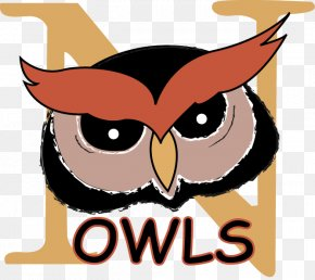 Principal Owl Cliparts - Owl National Primary School Clip Art PNG