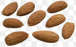 French Bean Almonds - Desktop Wallpaper Almond Biscuit Apricot Kernel PNG
