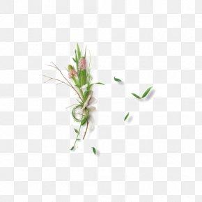 Green Grass - Leaf Green Clip Art PNG