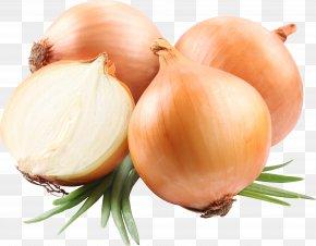 Onion Image - Hamburger Scrambled Eggs French Onion Soup Beefsteak PNG