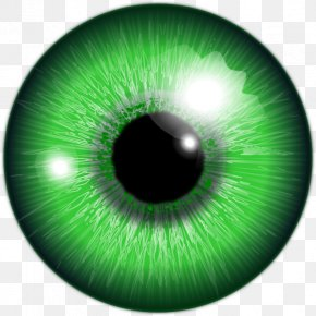 Eye - Human Eye Green Iris Color PNG