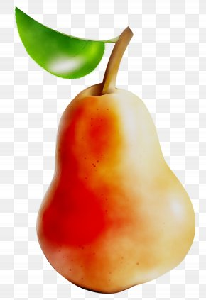 Pear Food Peppers Still Life Photography Accessory Fruit PNG