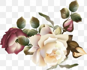 Vector Flower - Flower Garden Roses Photography Clip Art PNG