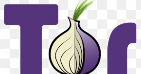 Proxy - The Tor Project, Inc .onion Onion Routing Dark Web PNG