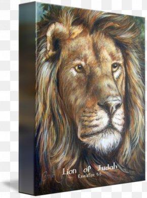 Lion Of Judah - Lion Roar Fine Art Painting PNG