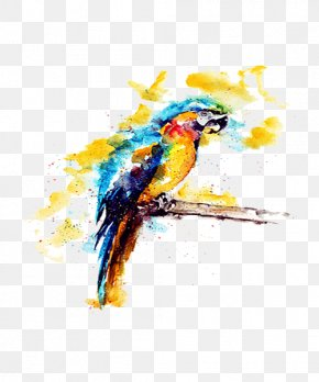 Yellow Watercolor Parrot Illustration - Budgerigar Parrot Watercolor Painting Illustration PNG