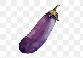 Eggplant - Vegetable Watercolor Painting Carrot PNG