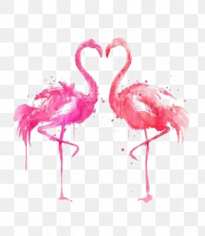 Ink Flamingos - Drawing Bird Ink Illustration PNG