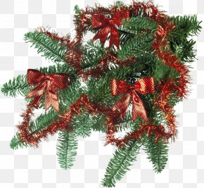 Ded Moroz New Year Tree Christmas Day Holiday PNG
