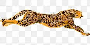 Flying Leopard - Cheetah Leopard Jaguar Clip Art PNG