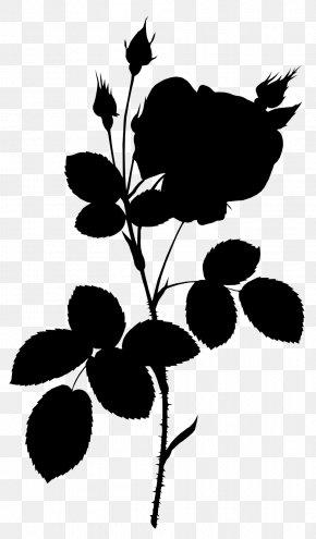 Leaf Idea Plant Stem Image Plants PNG