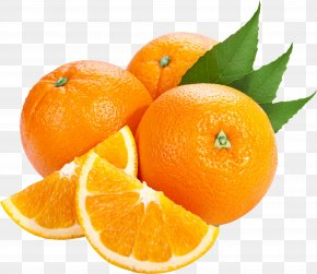 Orange Image Download - Bitter Orange Tangerine Clip Art PNG
