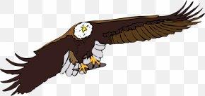 Free Eagle Vector - Eagle Flight Clip Art PNG