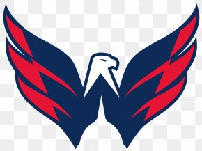 Falcon - Capital One Arena Washington Capitals National Hockey League Washington Valor Baltimore Brigade PNG