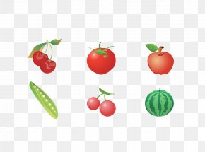 Vegetable And Fruit - Vegetable U852cu679c Pea PNG