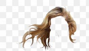 Hair - Long Hair Hairstyle Wig PNG