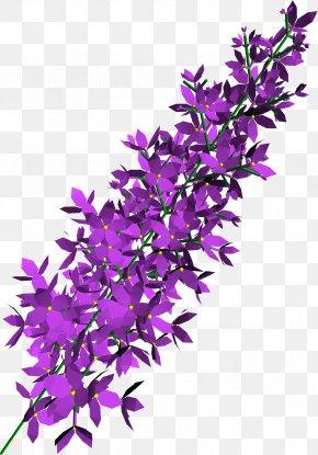 Lilac Transparent - Purple PNG