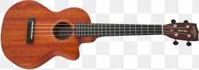 Acoustic Guitar - Acoustic Guitar Ukulele Tiple Acoustic-electric Guitar Bass Guitar PNG