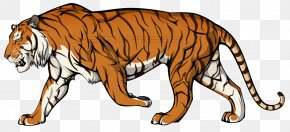 Tiger Cartoon - Felidae Animal Clip Art PNG