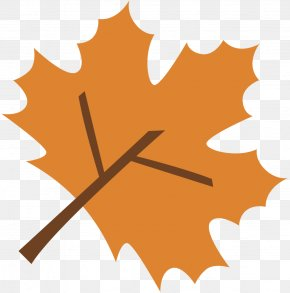 Maple Leaf Photography Green PNG