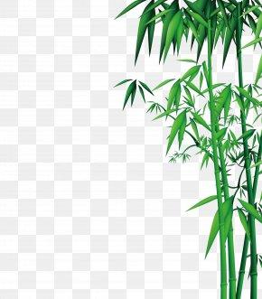 Bamboo - Bamboo Download PNG