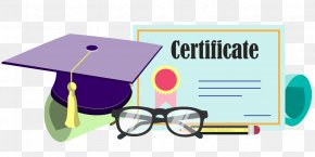 Bachelor Degree - Bachelor's Degree Academic Degree University Of Alabama At Birmingham Diploma Master's Degree PNG