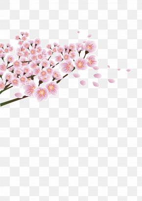 Peach Corner Decoration - Flower Peach Download PNG