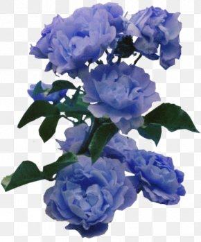 Blue Flower - Flower Blue Rose Color PNG