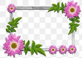 Nua Border - Clip Art Borders And Frames Flower Picture Frames Floral Design PNG
