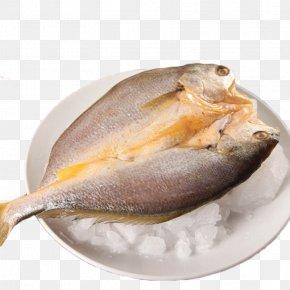 Frozen Yellow Croaker - Larimichthys Crocea Kipper Seafood Babi Panggang Fish PNG