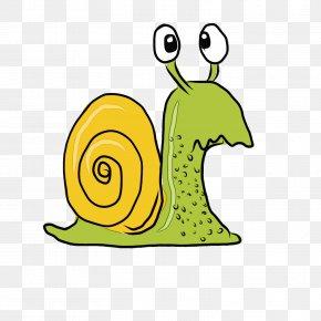 Sea Snail Slug - Snails And Slugs Snail Green Cartoon Yellow PNG