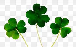 Four-leaf Clover Shamrock Saint Patrick's Day Luck PNG