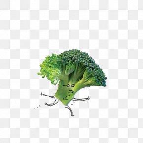 Cartoon Broccoli - Food Salad Vegetable Broccoli PNG
