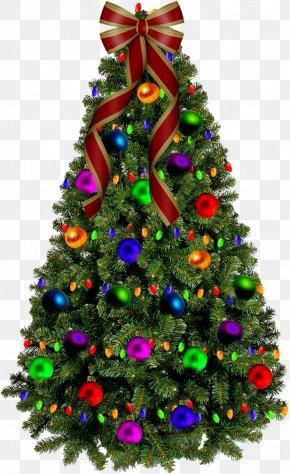 Christmas Tree - Christmas Tree Santa Claus Christmas Gift New Year Tree PNG