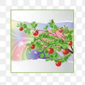 Plant Summer Tear Vector Material Effect - Visual Arts Season Clip Art PNG