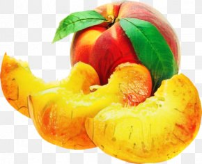 Superfood Vegan Nutrition - Apple Leaf PNG