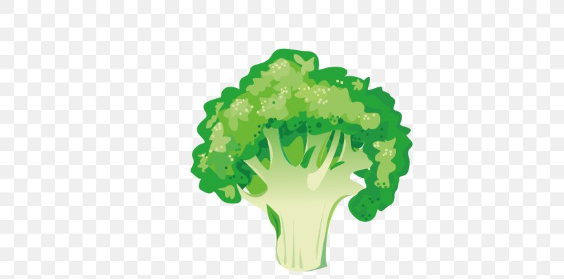 Vegetable Broccoli Asparagus Illustration, PNG, 721x406px, Gratin, Apple, Broccoli, Energy, Food Download Free