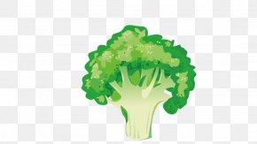 Broccoli - Vegetable Broccoli Asparagus Illustration PNG