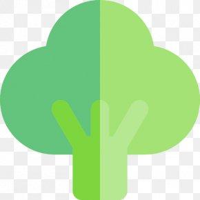Broccoli - Vegetarian Cuisine Organic Food Broccoli Slaw Vegetable PNG