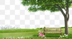 Grass Tree Background Material - Tree Chair PNG