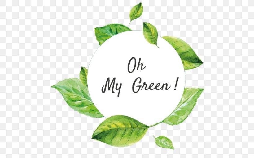 Leaf Tree Font, PNG, 512x512px, Leaf, Plant, Tree Download Free