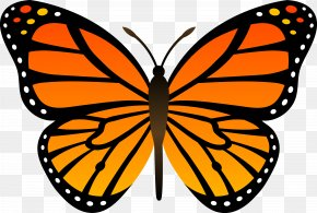 Butterfly Clip Art - Monarch Butterfly Insect Clip Art PNG