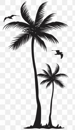 Monroe Vector - T-shirt Arecaceae Coconut Tree Clothing PNG