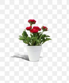 Flower Pot - Flowerpot Rosa Chinensis PNG