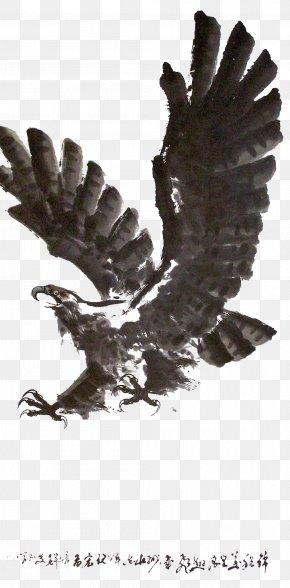 Ink Jet Eagle Digging Material - Printed T-shirt Ink Long-sleeved T-shirt PNG